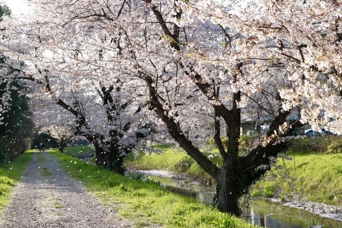 【東武動物公園】_f0348831_07194581.jpg