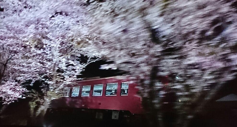 夜汽車の風景_f0081443_22470905.jpg