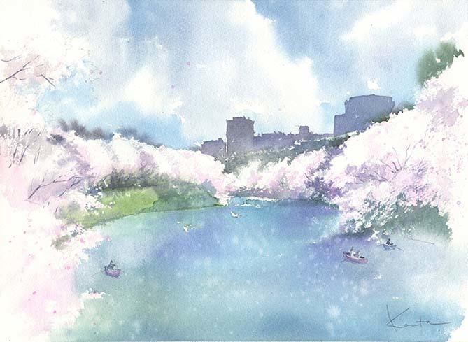 桜 水彩画 動画あり_f0176370_13544204.jpg