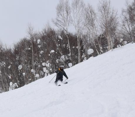 2018年3月3日幌加内スキー場で粉雪を楽しむ_c0242406_12024196.jpg