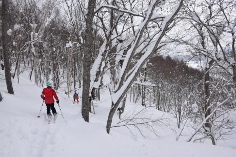 2018年3月3日幌加内スキー場で粉雪を楽しむ_c0242406_12074047.jpg
