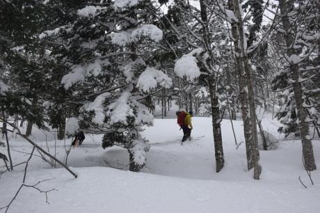 2018年3月3日3月3日 昼から[湯内山」を登って深雪を楽しむ_c0242406_16204241.jpg