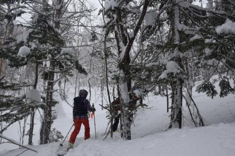 2018年3月3日3月3日 昼から[湯内山」を登って深雪を楽しむ_c0242406_16210255.jpg