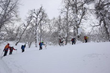 2018年3月3日3月3日 昼から[湯内山」を登って深雪を楽しむ_c0242406_17011619.jpg