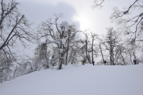 2018年3月3日3月3日 昼から[湯内山」を登って深雪を楽しむ_c0242406_17024982.jpg
