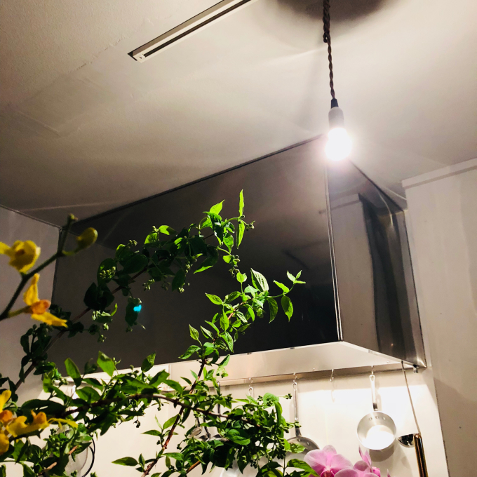 照明とワイン_e0149215_23033118.jpg
