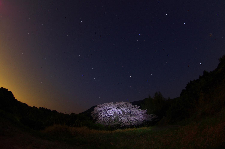 塔原の一本桜_f0215767_13541691.jpg