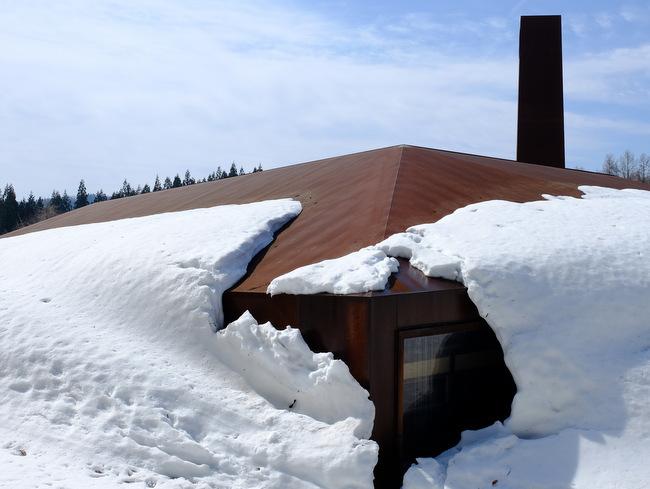 「雪の上を歩くって楽しい。美人林でスノーシュー!」_a0000029_11591787.jpg