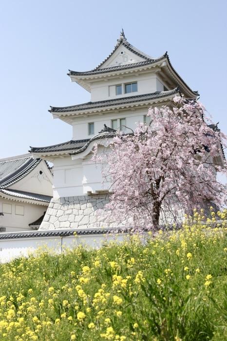【関宿城博物館】_f0348831_21170443.jpg