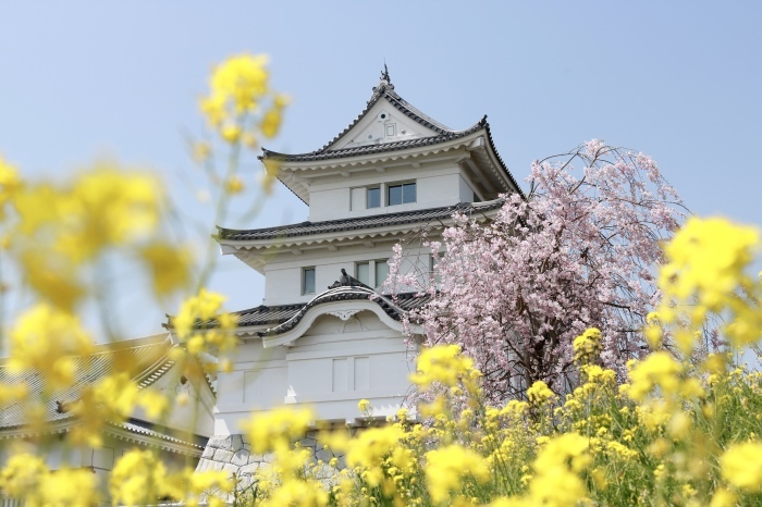 【関宿城博物館】_f0348831_21170977.jpg