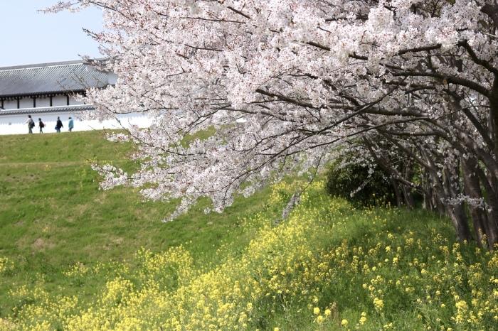 【関宿城博物館】_f0348831_21171325.jpg