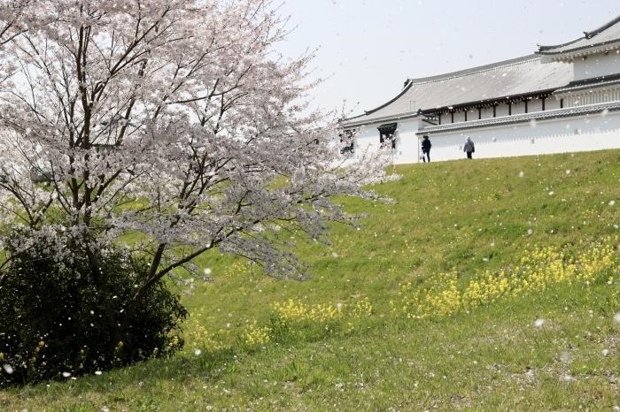 【関宿城博物館】_f0348831_21172847.jpg