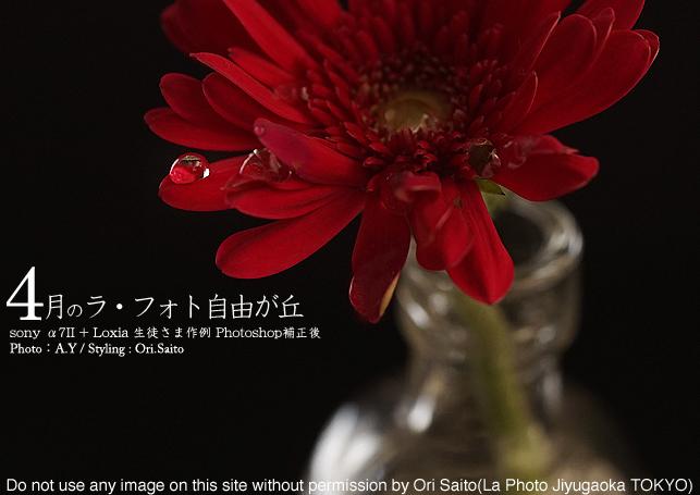 f0212049_20294532.jpg