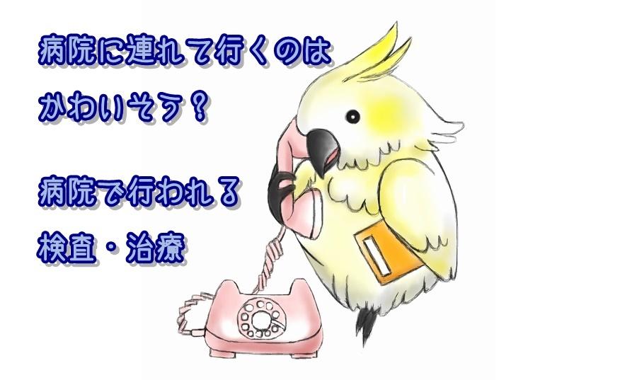 d0256356_12374718.jpg