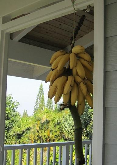 ハワイ島での料理教室_a0170699_21170294.jpg