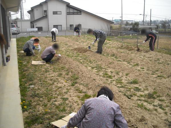農作業_a0115956_14153218.jpg