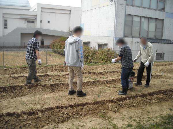 農作業_a0115956_14544141.jpg