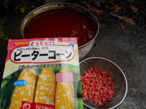 スイートコーン、熊本なたまめ 種まきしました_e0181260_20115021.jpg