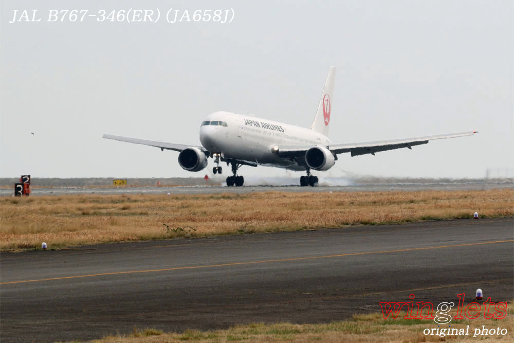 '18年 徳島空港レポート・・・JAL/JA658J_f0352866_21523162.jpg