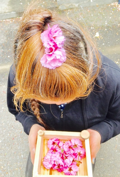 春の訪れ   (箱作りとお花)の巻_d0105967_22222295.jpg