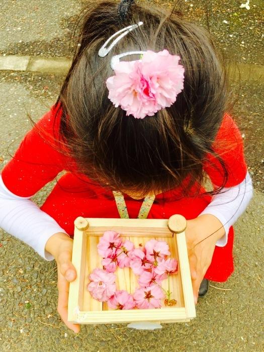 春の訪れ   (箱作りとお花)の巻_d0105967_22230153.jpg
