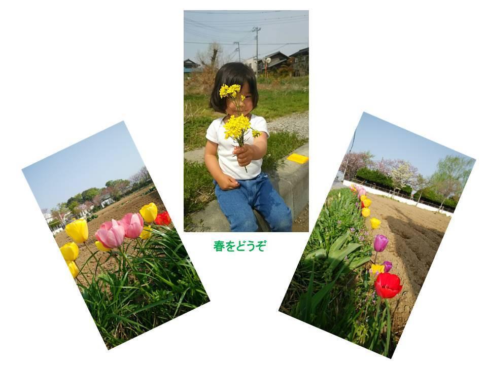 a0151311_10135897.jpg