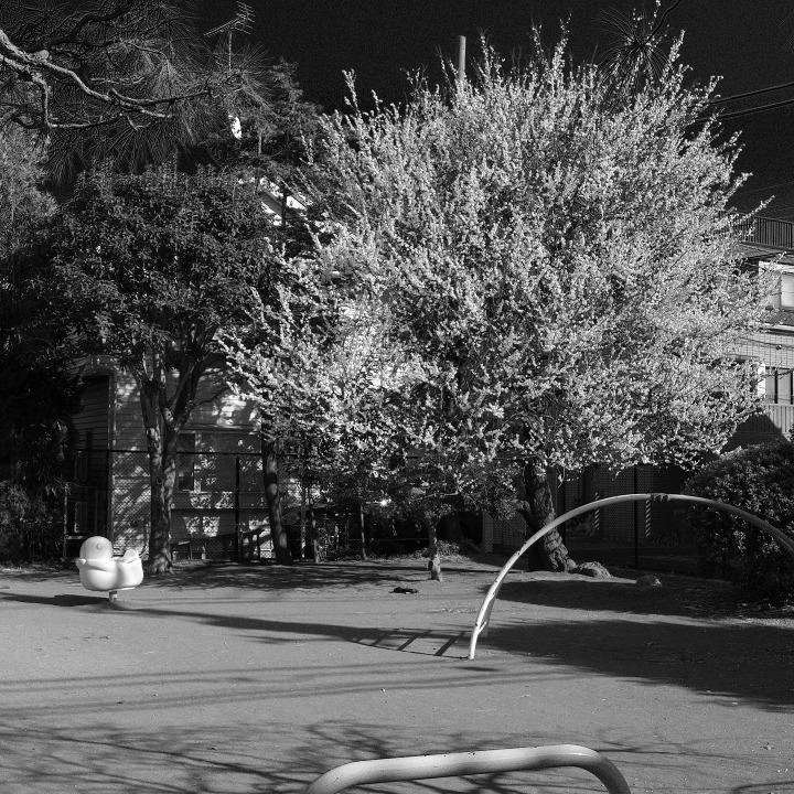 世田谷の古道?を歩く 鎌倉通りその7(最終~西太子堂) _b0058021_09414081.jpg