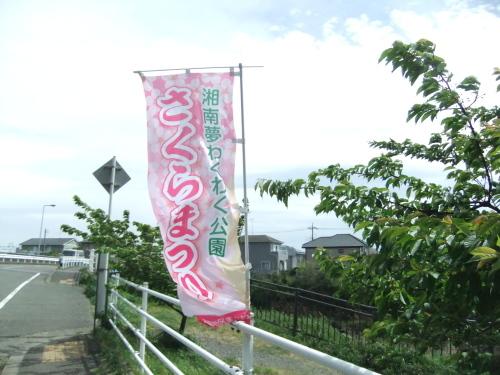 桜祭り.._b0137932_15041379.jpg