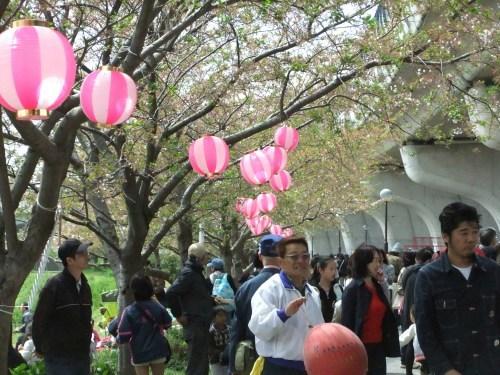 桜祭り.._b0137932_15051420.jpg