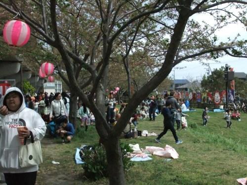 桜祭り.._b0137932_15055273.jpg