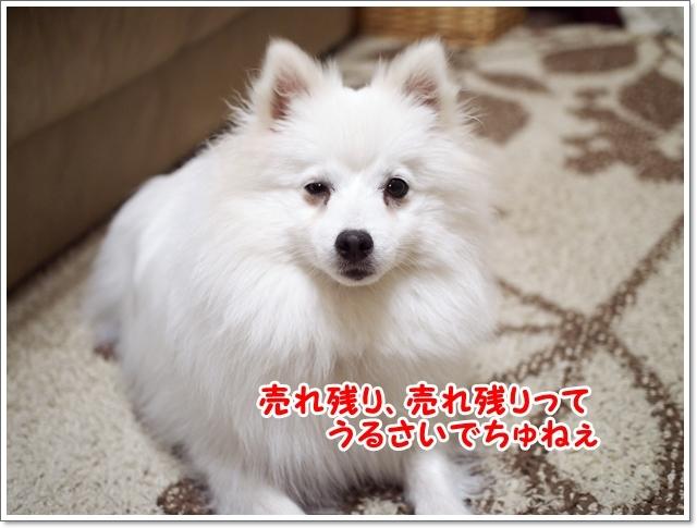 d0013149_00480713.jpg