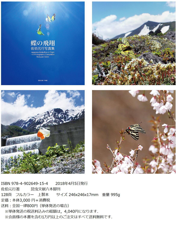 「蝶の飛翔」ついに発刊_a0146869_19112117.jpg