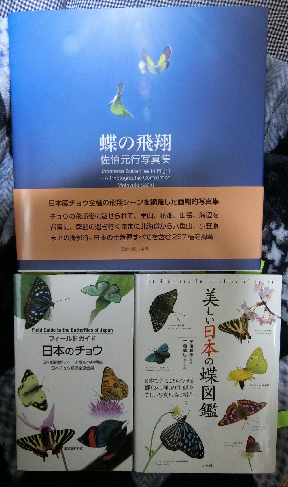 「蝶の飛翔」ついに発刊_a0146869_21112974.jpg