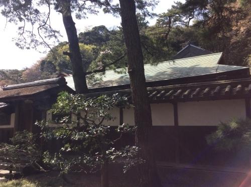お花見 横浜本牧「三渓園」 その6_e0021092_12255406.jpg
