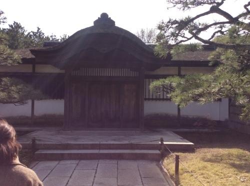 お花見 横浜本牧「三渓園」 その6_e0021092_12263236.jpg