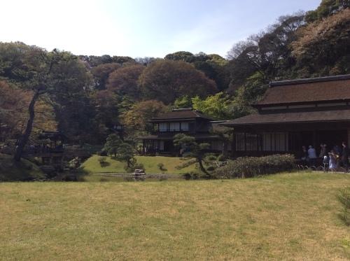 お花見 横浜本牧「三渓園」 その6_e0021092_12272917.jpg