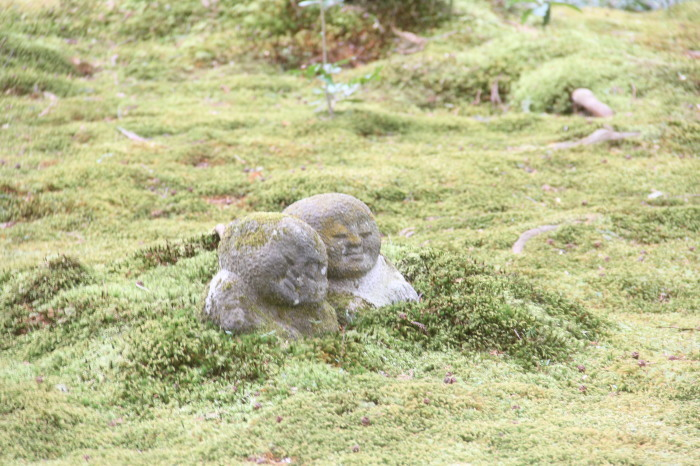 京都 大原観光 三千院_c0100195_07084069.jpg
