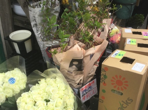 金曜日の花市場_b0210699_01460107.jpeg