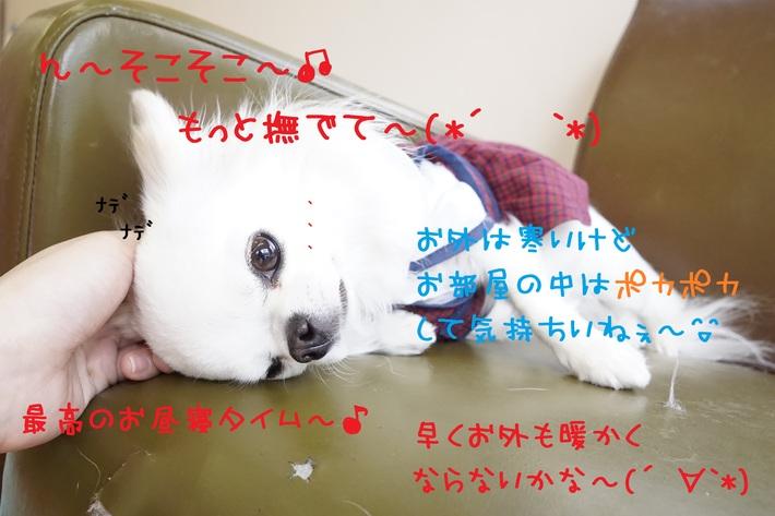 d0220513_1755788.jpg