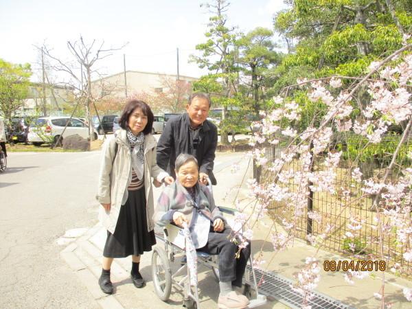 プラザのお花見会_a0166025_18335437.jpg