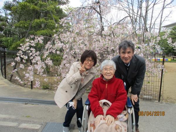 プラザのお花見会_a0166025_18342393.jpg