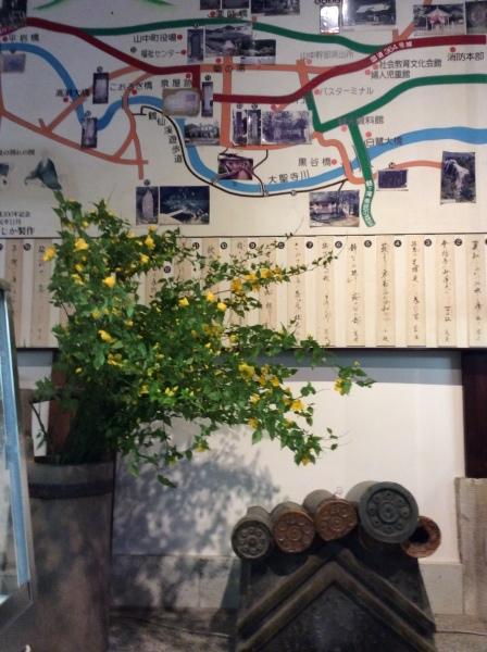 「芭蕉の舘」の草花⑴_f0289632_11015464.jpg