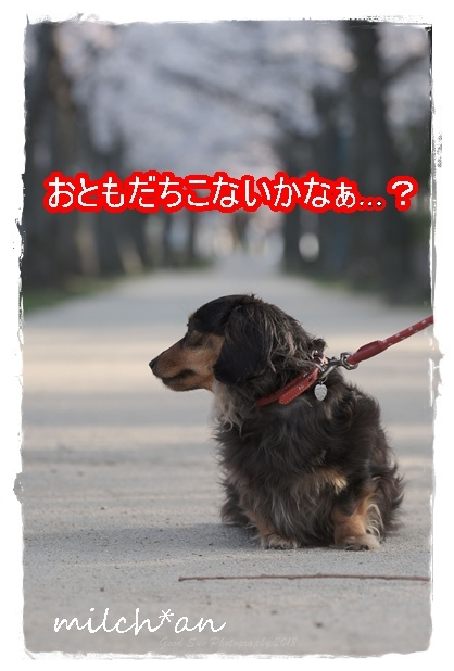 b0115642_19450018.jpg