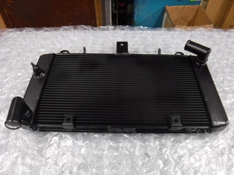 GPZ900R 冷却系メンテでござり~♪ その3_a0163159_00192428.jpg