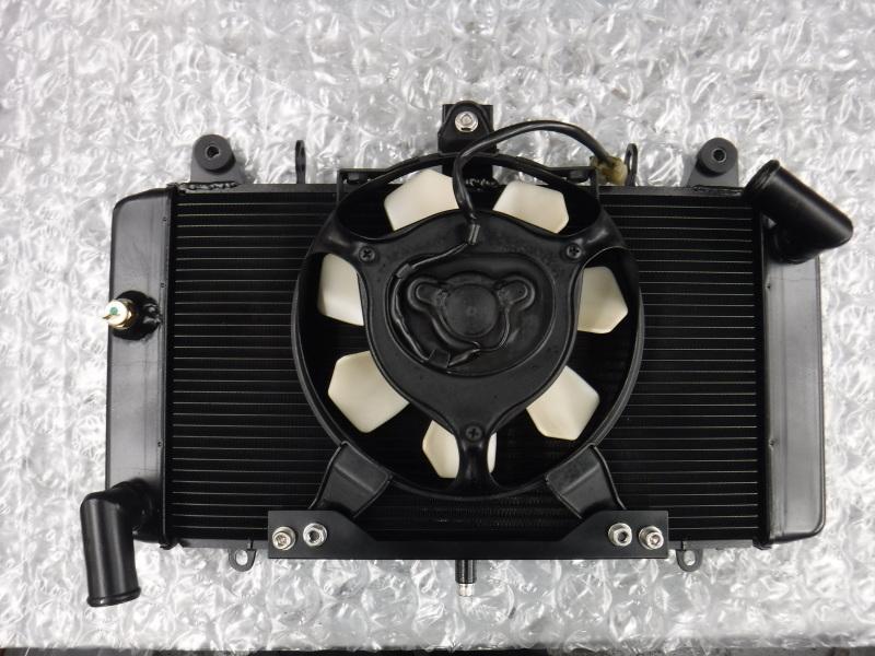 GPZ900R 冷却系メンテでござり~♪ その3_a0163159_00203073.jpg