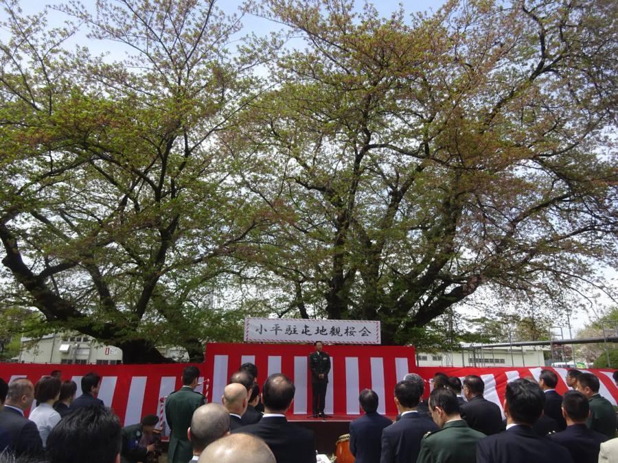 小平駐屯地観桜会_f0059673_00010447.jpg