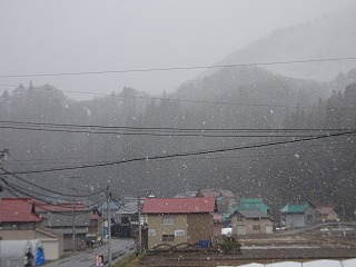 雪へ_d0122374_22403354.jpg