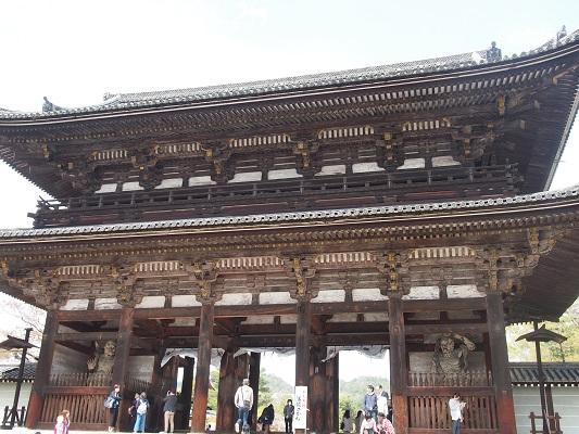 仁和寺の御室桜と御殿_a0131787_15294878.jpg