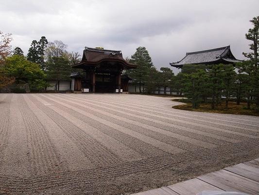 仁和寺の御室桜と御殿_a0131787_1537187.jpg