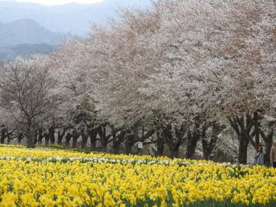 岩井親水公園_d0169692_22484882.jpg